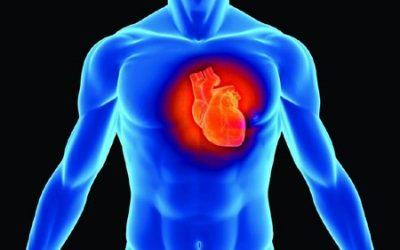 Bệnh tim và cách chữa trị