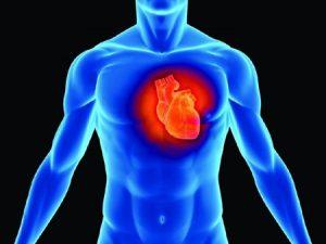 Hẹp ban 2 lá cũng là 1 trong những bệnh lí tim mạch gây nguy hiểm tới tính mạng người bệnh (ảnh minh họa).