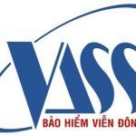 Công ty bảo hiểm Viễn Đông – VASS