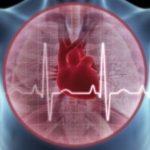 Tim mạch và bệnh cao huyết áp