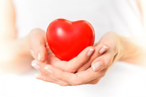 Bệnh viện Thu Cúc có khám tim mạch không?