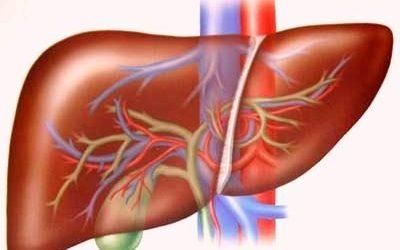 Cách điều trị viêm gan B mạn tính