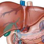Cách điều trị bệnh gan nhiễm mỡ