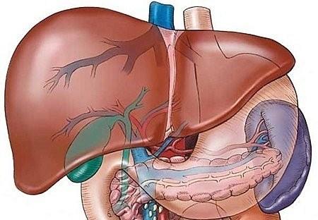 Những tổn thương gan cần được phát hiện và điều trị sớm