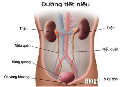 viem-duong-tiet-nieu-co-nguy-hiem-khong