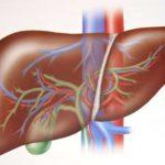 Những điều cần biết để giúp gan khỏe mạnh
