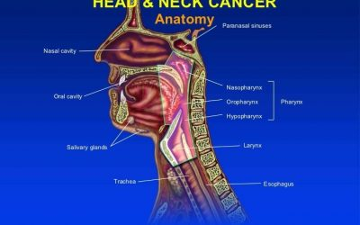 Tìm hiểu bệnh ung thư đầu cổ