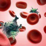 Tất cả những điều cần biết về ung thư máu
