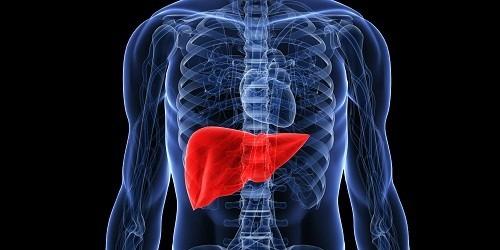 Có nhiều nguyên nhân gây vôi hóa gan nhưng trước hết cần phải xác định rõ đây không phải là bệnh mà biểu hiện của một tình trạng viêm nhiễm mãn tính và thường là lành tính.