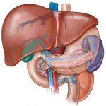 Những điều cần biết về bệnh vôi hóa gan