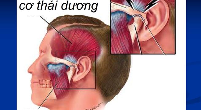 phong-tranh-roi-loan-thai-duong-ham