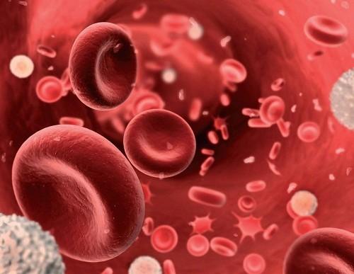 Thông thường xét nghiệm đầu tiên được sử dụng để chẩn đoán thiếu máu là xét nghiệm công thức máu toàn bộ.