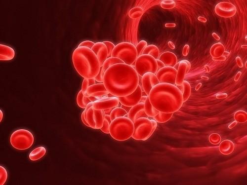 Thiếu máu là tình trạng mà số lượng các tế bào hồng cầu trong máu thấp.