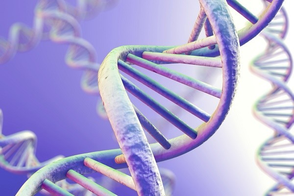 DNA Magnification
