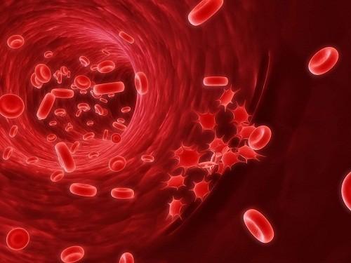 Chảy máu trong bệnh sốt xuất huyết là do sự sụt giảm nồng độ tiểu cầu.
