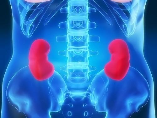 iViêm phúc mạc do vi khuẩn và tăng huyết áp tĩnh mạch gan có thể dẫn đến hội chứng gan thận.