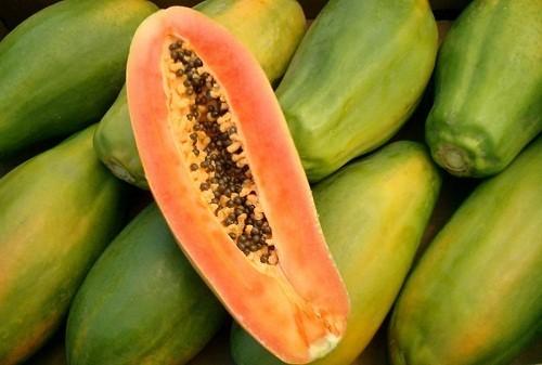 Đủ đủ cũng giống như dứa có chứa các enzyme tự nhiên giúp tiêu hóa protein.
