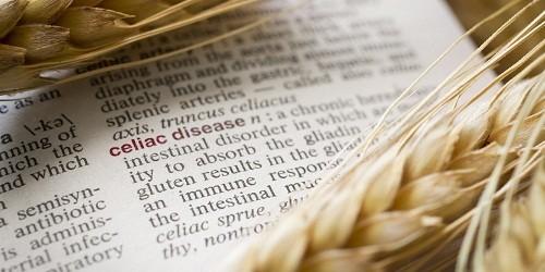 Người bệnh Celliac không thể dung nạp gluten, một loại protein có trong lúa mì, lúa mạch đen và lúa mạch.