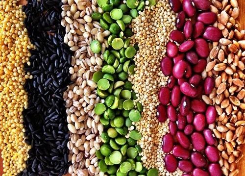 Thêm ngũ cốc vào chế độ ăn uống hàng ngày sẽ giúp kiểm soát bệnh tiểu đường.
