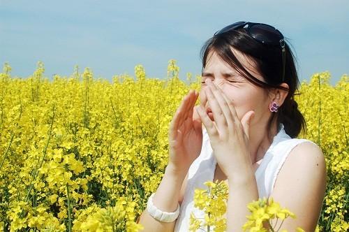 Các chất bình thường ít gây hại như phấn hoa, bụi nhà... có thể gây dị ứng ở nhiều người.