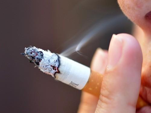 Hút thuốc lá là một trong những yếu tố nguy cơ chính của bệnh tim mạch, đột quỵ và ung thư.