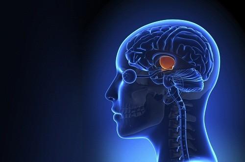 Nguyên nhân đột quỵ trong từng trường hợp là khác nhau, tùy thuộc vào loại đột quỵ.