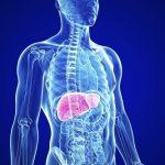 Những điều cần làm sáng tỏ về bệnh gan