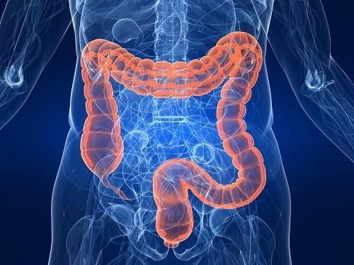 Nội soi đại tràng là một xét nghiệm được sử dụng để tìm kiếm và phát hiện những thay đổi hoặc bất thường bên trong đại tràng (ruột già).
