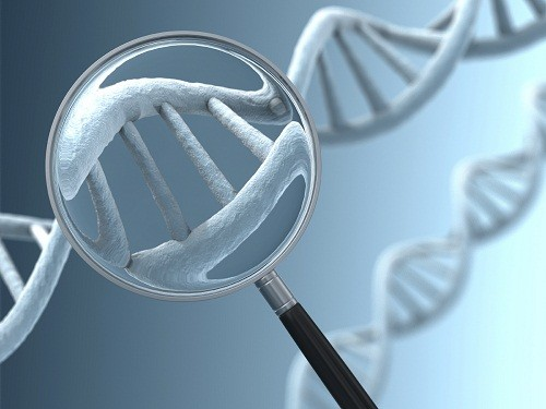 Kết quả xét nghiệm karyotype thường có trong vòng 1 – 2 tuần.
