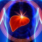 Làm thế nào để bảo vệ gan?