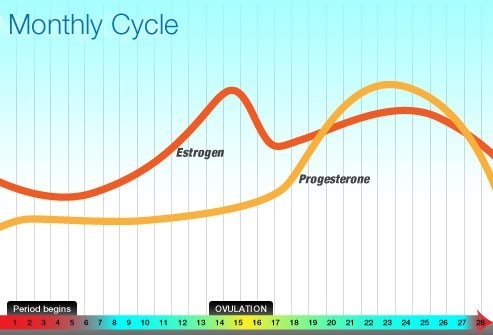 Nguyên nhân chính xác gây ra hội chứng này vẫn chưa được xác định nhưng có liên quan tới sự sụt giảm của nồng độ estrogen và progesterone trong tuần trước kỳ kinh.