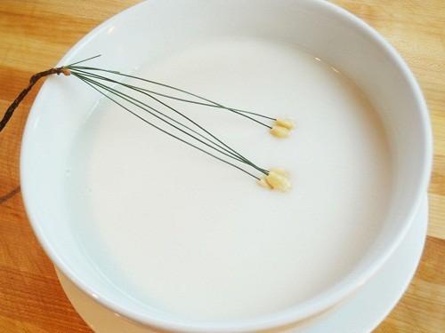 Theo lời khuyên của các bác sĩ, trong một vài ngày đầu người bệnh chỉ nên ăn thức ăn dạng lỏng như cháo, súp...
