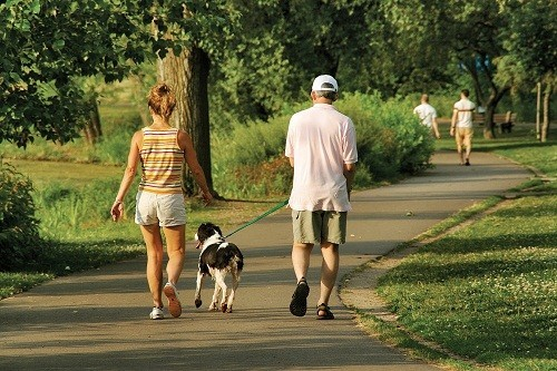 Chỉ nên vận động nhẹ nhàng như đi bộ, đi dạo để cải thiện tinh thần và thúc đẩy phục hồi.