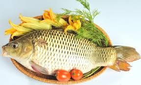 Thường xuyên ăn cá trong quá trình mang thai giúp mẹ bầu bổ sung canxi. Cá còn giúp thai nhi phát triển trí não rất tốt.