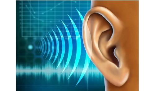 Một số bệnh lý như xốp xơ tai, bệnh Meniere, cao huyết áp, bệnh tim mạch, các vấm đề về tuần hoàn,... có thể là nguyên nhân gây ù tai.