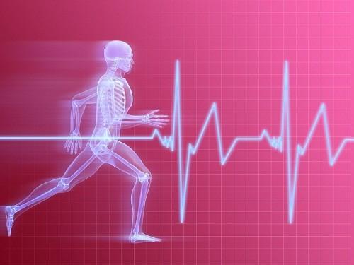 Nhịp tim thường tăng cao khi chúng ta tập thể dục nhưng nếu tình trạng này vẫn tiếp diễn hơn 10 phút sau khi hoàn thành việc luyện tập thì rất đáng lo ngại.