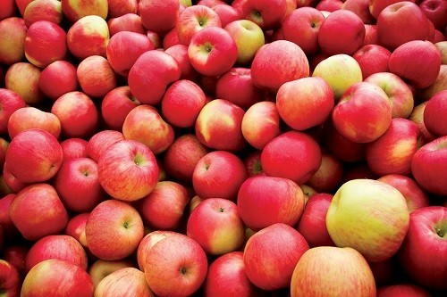 Một quả táo có tác dụng chống oxy hóa tương đương với 1.500 mg vitamin C.