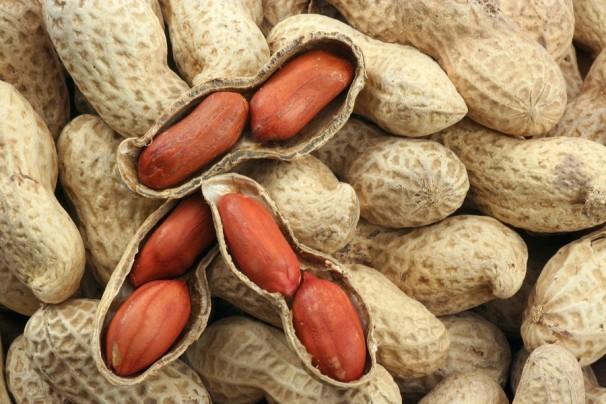 Lạc là thực phẩm lành tính và chữa nhiều dinh dưỡng.