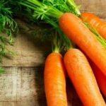Thực phẩm chất lượng cho giai đoạn tập ăn của trẻ