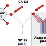 Xét nghiệm CA 125 là gì?