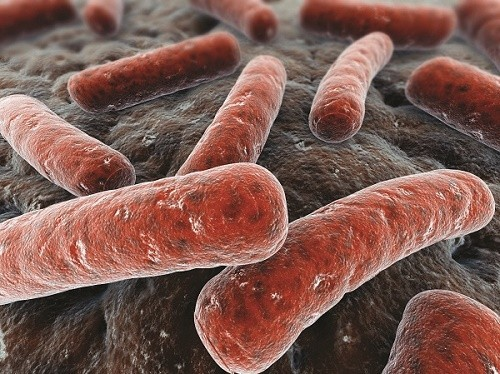 Nguyên nhân gây bệnh lao là do vi khuẩn Mycobacterium tuberculosis thường lan truyền trong không khí từ người này sang người nọ.