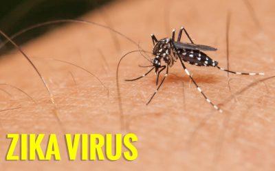 Bé gái 4 tuổi ở Long An nhiễm virus Zika