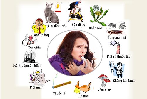 Có nhiều nguyên nhân gây ra các bệnh về phổi - phế quản như dị ứng với phấn hoa, lông vật nuôi, không khí lạnh...