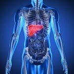 Hiểu về u nang gan