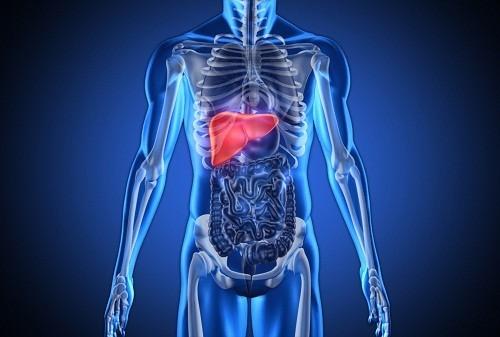 U nang gan là những túi bất thường chứa đầy chất lỏng trong gan.