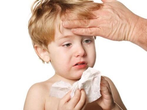 Khi bị viêm phế quản phổi, trẻ thường có biểu hiện như sốt nhẹ, ho khan, hắt hơi, sổ mũi...