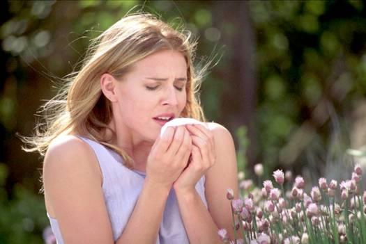 Hắt hơi là triệu chứng của viêm mũi dị ứng