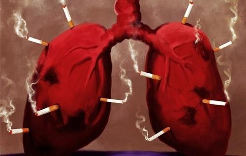 Thuốc lá không những gây ung thư phổi mà nó còn gây ra nhiều bệnh phổi khác