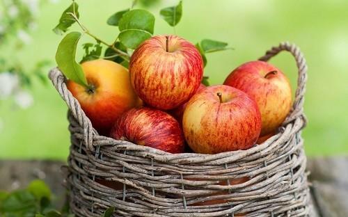 Táo, khi xay nhuyễn thành sốt táo, có gần như cùng một lượng chất xơ và có thể được sử dụng để thay thế bơ hoặc dầu trong các món ăn như salad.