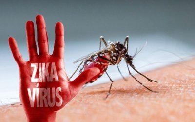 Virus Zika lan rộng 16 quận huyện Sài Gòn